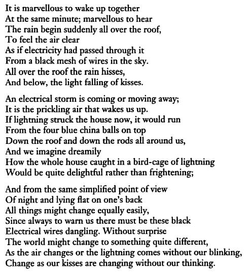 poetry of elizabeth bishop essay